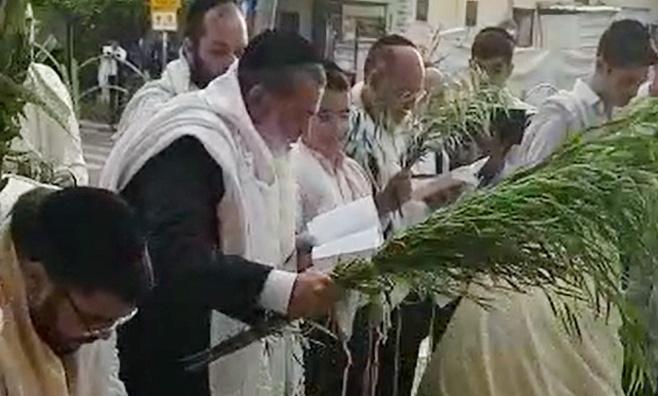 תיעוד: חביטת הערבה של הרב יגאל כהן