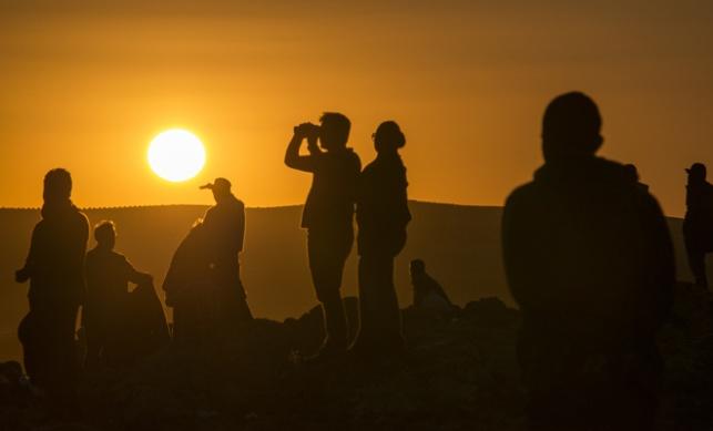 עיראק: מאה גופות כרותות ראש התגלו במוסול