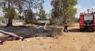טרור הבלונים חזר עם שלוש שריפות בנגב