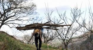 העבד אולץ לסחוב עצים בשבת, גם בגיהינום