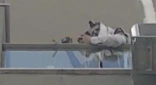 מהמרפסת: סיום המסכת של דוד קליגר