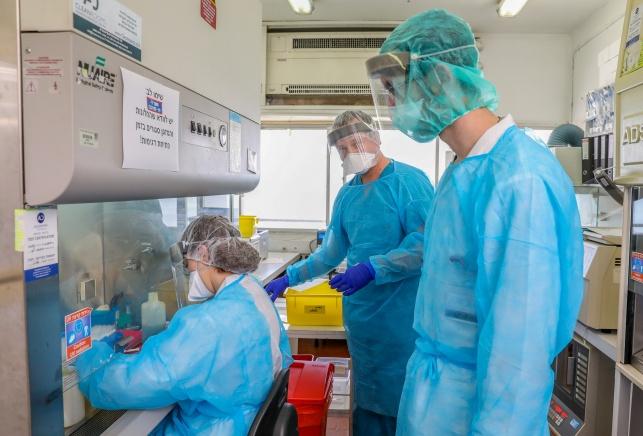 מספר המתים מהנגיף עלול להגיע ל-2 מיליון