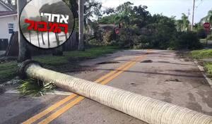 מתוך תיעוד הוידאו - אחרי המבול: תושבי פלורידה מתעוררים להרס רב ברחובות