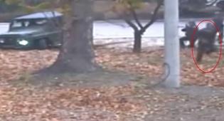 האם זה החייל בגופו נמצא האנתרקס - עקבות אנתרקס נמצאו בגוף החייל הקוריאני
