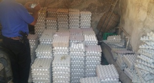 12,800 ביצים הוחרמו במחסן בבית חנינא