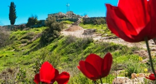 פינה שקטה וירוקה ליד ירושלים. הקסטל - הקסטל - פינה שקטה וירוקה ומורשת קרב