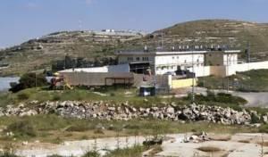 אדוריים בהר חברון
