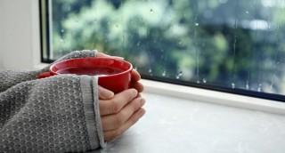 כך תשמרו על ביתכם נקי מלחות ועובש