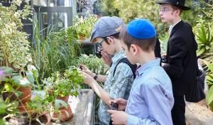 מוסקבה: הילדים אמרו ברכת אילנות בגן הבוטני