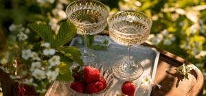 איך לנקות כוסות יין וכלי זכוכית