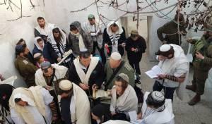 מאות קראו את המגילה בקבר יהושע בן נון