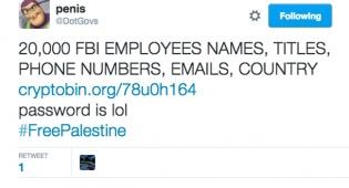 האקר פרו פלסטיני חשף עשרים אלף סוכני FBI