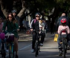 תל אביב שדרות רוטשילד אופניים