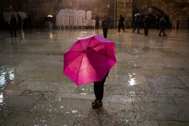 התחזית: ירידה בטמפרטורות; בערב - גשם