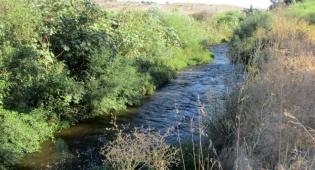 טיול דרך עדשת המצלמה בהרי יהודה הירוקים
