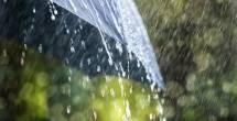 הדברים שאולי לא ידעתם על... גשם | פרק 4