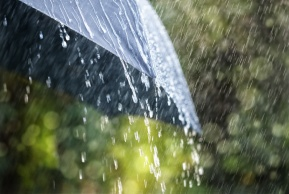 הדברים שאולי לא ידעתם על... גשם   פרק 4