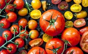 סלט עגבניות בתיבול פיקנטי. ככה זה מתחיל - סלט העגבניות שאתם עומדים להגיש ליד כל מנה