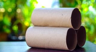 5 שימושים מפתיעים לגלילים של נייר טואלט ונייר מגבת