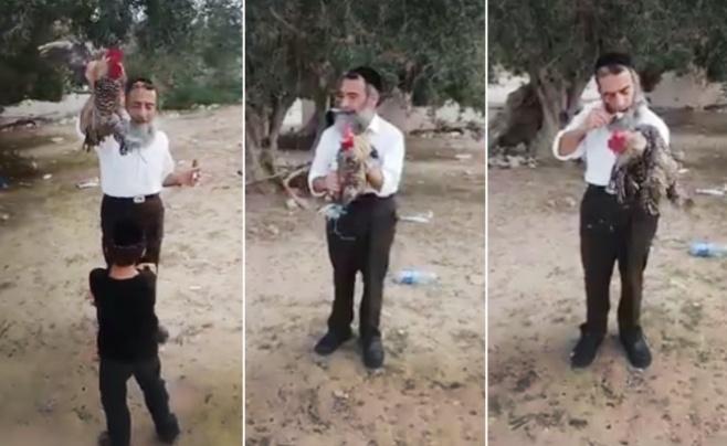 כזה לא ראיתם: איך עושים כפרות בתוניסאית