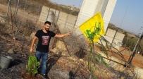 נסראללה ביקש לבנוני נענה ושתל עץ בגבול