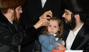הרבי מסאדיגורה ערך 'חלאקה' לילדי חסידיו