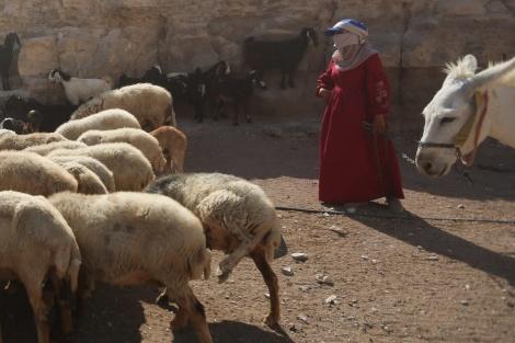 תיעוד: החיים השלווים של הבדואים במדבר