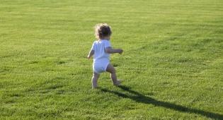 בעשרה צעדים לגמול את הילד מחיתול. אילוסטרציה - בלי טריקים ובלי שטיקים: איך לגמול את הילד מחיתול