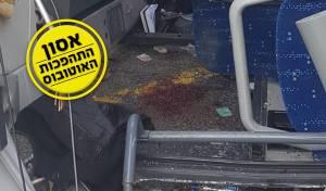 שלוליות הדם בתוך האוטובוס ההפוך