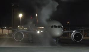 """מטוס אייר אינדיה הראשון בקו הישיר נוחת בנתב""""ג"""