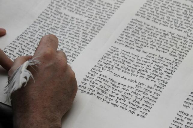 """הכנסת ספר תורה לביהמ""""ד שטפנשט • גלריה"""