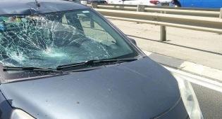 """הרכב הפוגע - נפטר מפצעיו: הבחור אליהו יוסיפוב ז""""ל"""