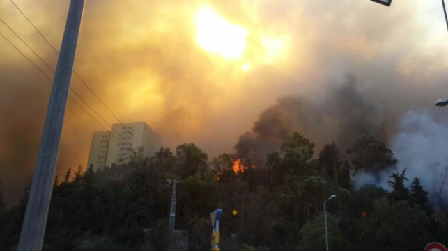 האש בשכונת רוממה בחיפה