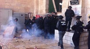 כוחות המשטרה בהר הבית, היום