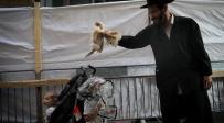 כפרות וארבעת המינים: נערכים לחגי קורונה