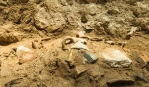 מבית ראשון: התגלה עדות לרעידת האדמה