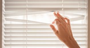 האם אכן ישנו היזק ראיה וצנעת הפרט?