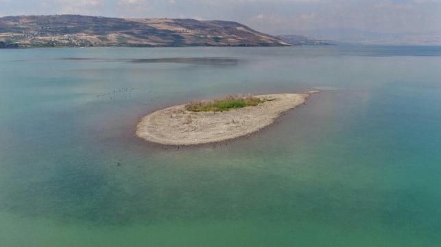 האי בכנרת שמתגלה עם ירידת המפלס