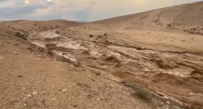 אחרי הגשמים: זו הזרימה בנחל צאלים • צפו