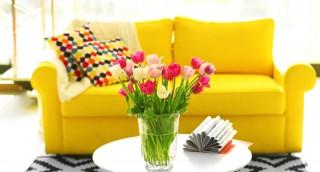 10 דרכים למנוע ריחות רעים ולשמור על ריח טוב בבית