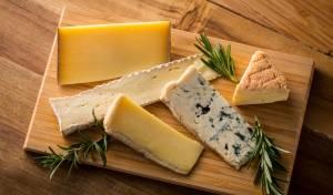 מחקר: מוזיקת היפ הופ משפרת טעם של גבינה