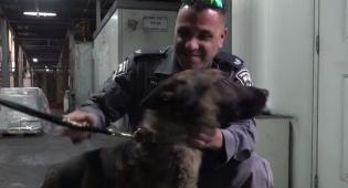המשטרה קיבלה 20 כלבים מצ'כיה • צפו