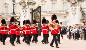 אובססיבית למשפחת המלוכה? המדע מסביר למה