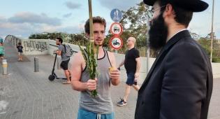 תיעוד מכל הארץ: יהודים מנענעים ד' מינים