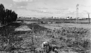 השדות מסביב לחדרה ב-1938