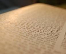 """הדף היומי: מס' סנהדרין דפים מ""""ז-מ""""ח יום שישי י' באלול"""
