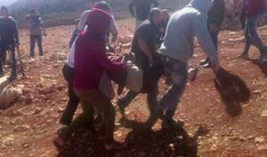 דרדור הסלע והתפרעות הפלסטינים מול המתנחלים והחיילים - שוב נורה למוות פלסטיני סמוך לכפר קוסרא