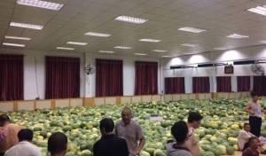 30 טון אבטיחים רעננו את התלמידים • צפו