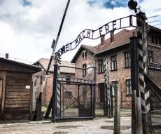 שליש לא מאמינים שנהרגו 6 מיליון בשואה