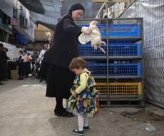 צפו: הירושלמים ערכו 'כפרות' על תרנגולים